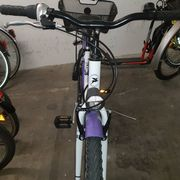 Jugend Fahrrad Pegasus