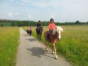Ponyreiten in Renningen