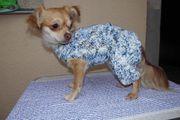 Hundeanzug Pullover