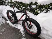 Fahrrad Specialized Fatboy Gr L