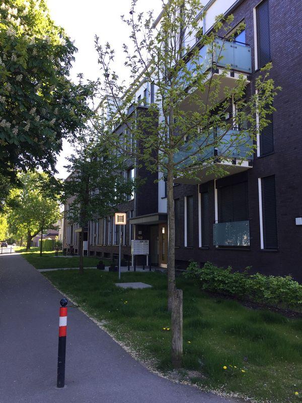 Neubau 3 Zimmer » Vermietung 3-Zimmer-Wohnungen